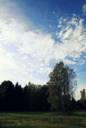 Herbst fetzt - blauer Himmel 1